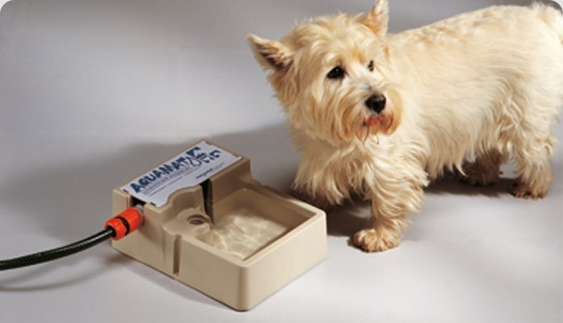 Aquamat Dog Drinking Fountain / Bowl / Bottle / Hose