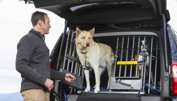 MIM Safe Variogate Universal Cargo Barrier For Dogs and Cars