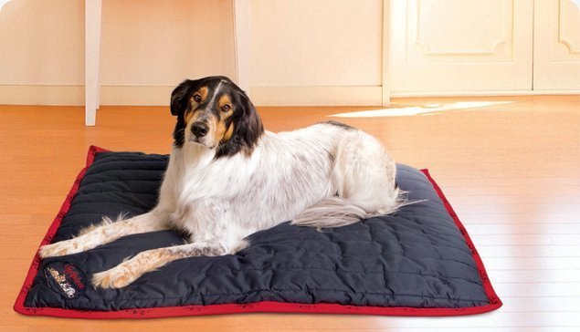 Softplace Dog / Pet Bed